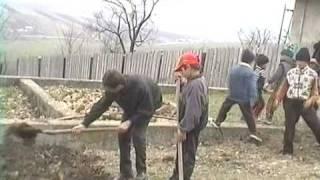 Parcul Comenius 2004