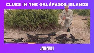 JEOPARDY! PASSPORT: CLUES IN THE GALÁPAGOS ISLANDS | Jeopardy.com