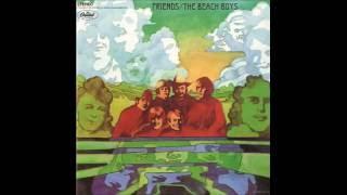 The Beach Boys - Anna Lee the Healer cover