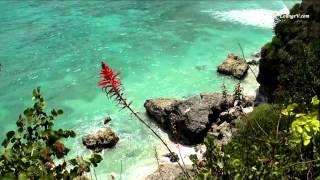 Romeo Santos-Fui a jamaica (letra)