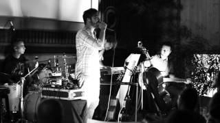 Vita de Vie - Visare (acustic) @ Electro Acoustic Garden