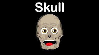 Skull/Skull Bones/Skull Anantomy/Skull Anantomy Song for Kids