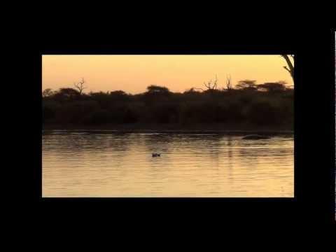 Evening at Sunset Dam, Kruger National Park