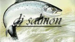 dj salmon rude boy mix.wmv