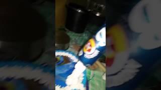 Bolo antártica  com  a lata de cerveja