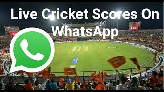 Live Cricket Scores On WhatsApp [Hindi] | Use WhatsApp As Search Engine