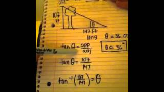 How to find the angle of elevation of the sun using the shadow of a tree