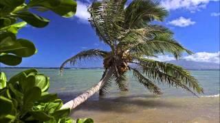 eliane fernandes novo cd 2012 o crente e a palmeira