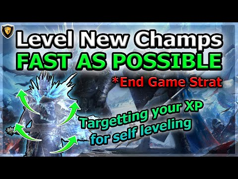RAID Shadow Legends | Leveling New Champs | Fast by Targeting XP | End Game Strat