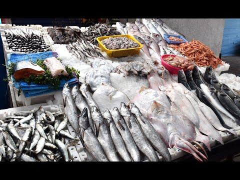 Video : La forte demande en poisson pendant le Ramadan fait monter les prix