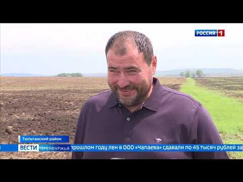 План по посеву яровых в Оренбургской области выполнен на 60%
