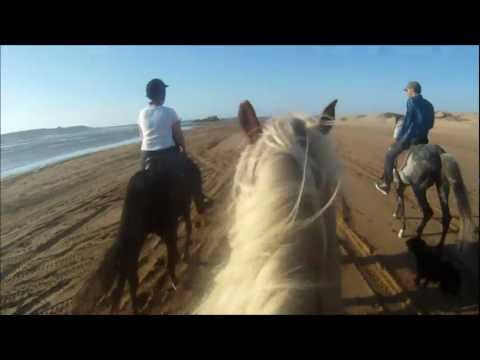 Essaouira Beach ride extended