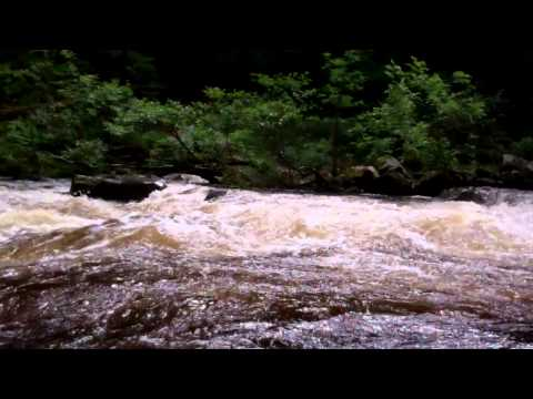 River Braan Dunkeld Perthshire Scotland July 8th