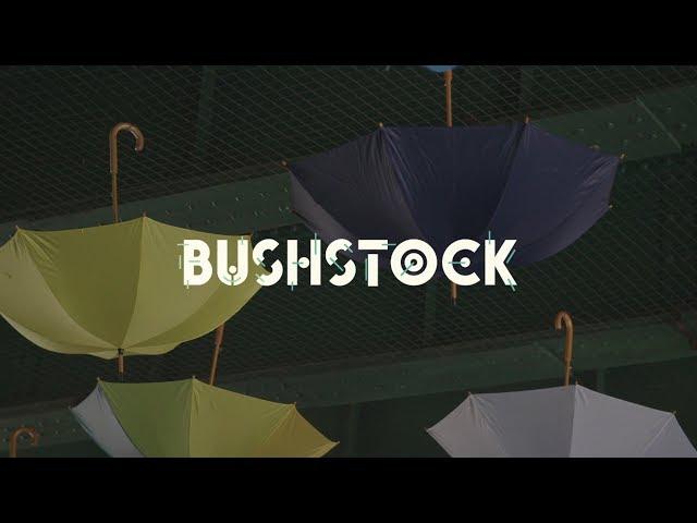 Bushstock Festival Highlight 2017