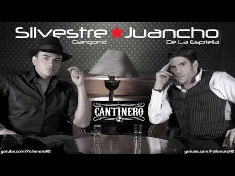 silvestre-dangond-diosa-divina-cantinero-vallenato-2010-vallenatohd