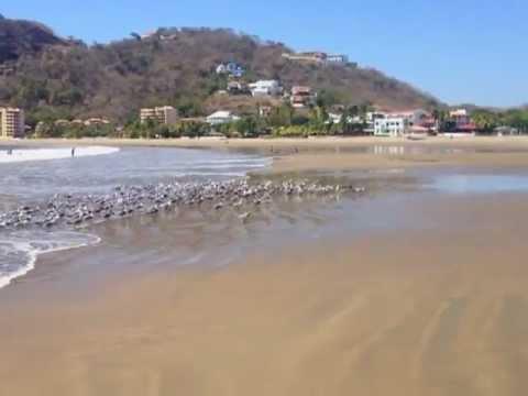 Nexus Nicaragua – San Juan del Sur