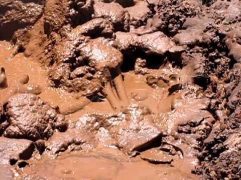 Thermal Mud Pits of San Jacinto Nicaragua