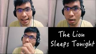 The Lion Sleeps Tonight [Cover] - 1 Man Acapella