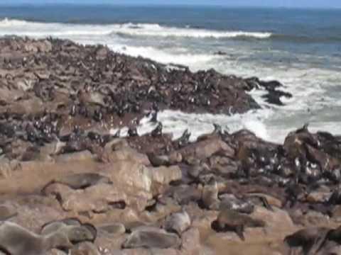 Africa Overland – Capetown to Nairobi