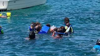 Nadando con Tortugas(Carey) en Barbados
