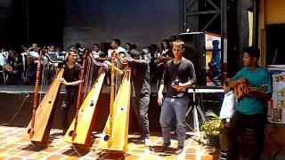 Arpistas de la Escuela de Joropo Ciro Pimentel en Cagua