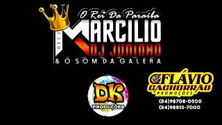 DJ MARCILIO DJ JUNINHO - DENTRO DO CARRO - (MUSICA)