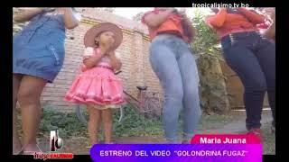MAKE OFF MARIA JUANA GOLONDRINA FUGAZ