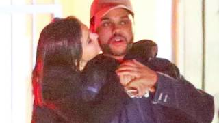 Selena Gomez Cheers On The Weeknd & Calls Him 'Baby' In Instagram Story At Amsterdam Concert