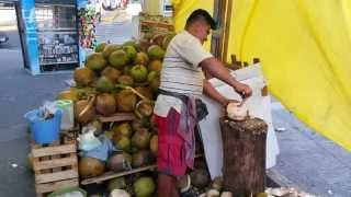how to eat fresh coconut