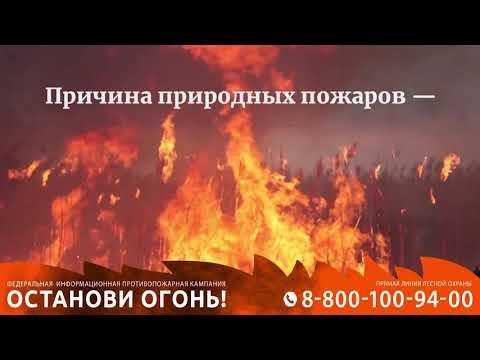 Причина природных пожаров