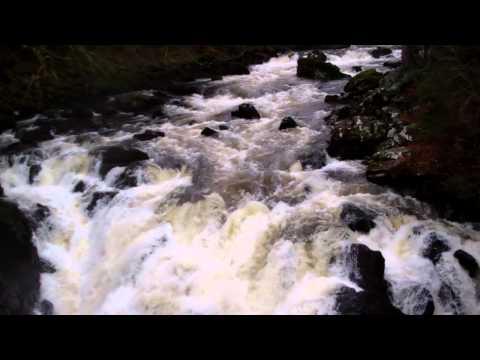 Falls Of Braan Dunkeld Perthshire Scotland