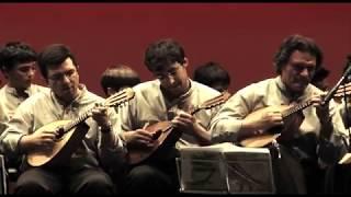 Augusto Canário & Amigos | Celebrar a Amizade | Medley Latino Americano Instrumental