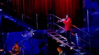 Johnny Hallyday - Diégo,libre dans sa tête