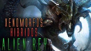 ALÍEN REY/XENOMORFOS HÍBRIDOS - MaxiLunaPMY