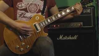 Slash - Apocalyptic Love (FULL guitar cover) HD