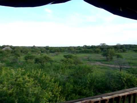 View from Camp at Kruger