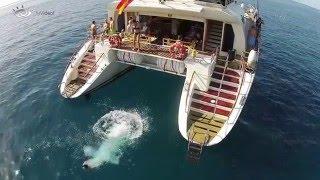 Freebird Catamaran Tenerife (Full HD Official)