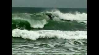 surf da raiz 2