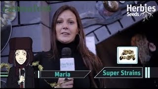 Super Strains Seeds @ Cannafest 2013 Prague / Praha