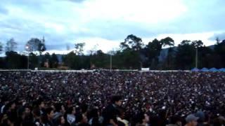 Rock al Parque- Molotov