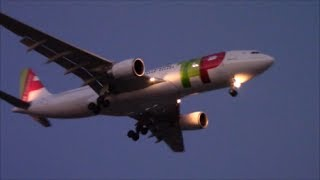 SERVICE RESUMPTION: TAP Portugal Airbus A330-202 [CS-TOL] Landing in Toronto on RWY 24R