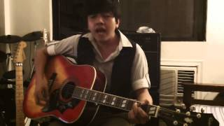 Love of a Lifetime cover by Ael (Epiphone Hummingbird and Dove)