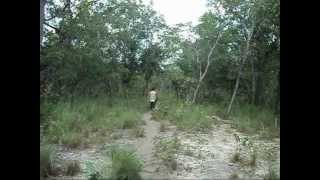 Reconhecimento de área para acampamento e bushcraft no sul do Piauí