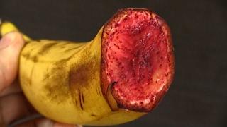 Что случилось с бананом? Самодельный банан | DIY