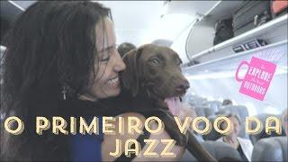 Ana Carttori #Jazz: Viajando com meu Cachorro de Avião na Cabine (Animal de Suporte Emocional)