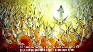 Canta Aleluya (instrumental)