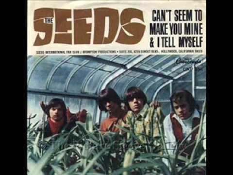 the-seeds-cant-seem-to-make-you-mine-lynx-bullet-advert-song-trystan-wilcock