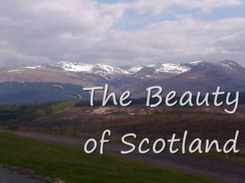 The Longest Try Part 1 Scotland.wmv