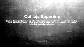 Medical vocabulary: What does Quillaja Saponins mean