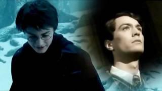 Harry Potter-The Plagues